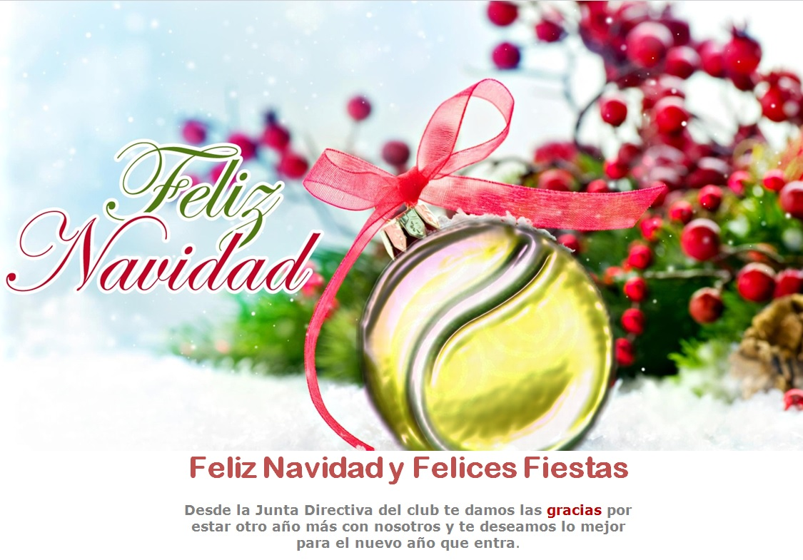 Felicitacion navidad club 2015